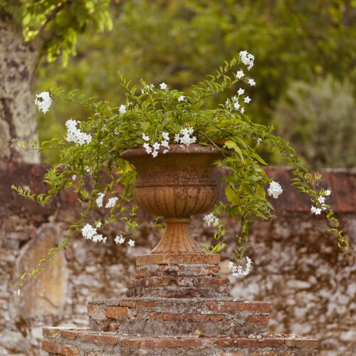 Vaso toscano in terracotta su antico muro di cinta in pietra e laterizio